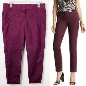 LOFT Zoe Deep Purple Cuffed Corduroy Pants 6